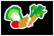 野菜・果物収穫体験