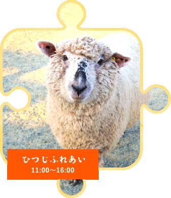 11:00~16:00ひつじふれあい