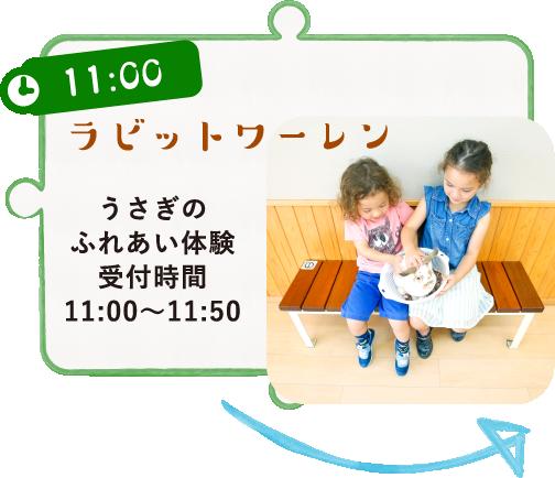 11:00 ラビットワーレン うさぎのふれあい体験受付時間11:00~11:50